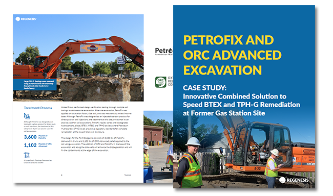 PetroFix excavation